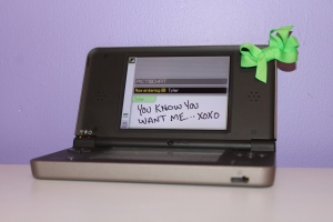 The DSi XL, all pretty like.